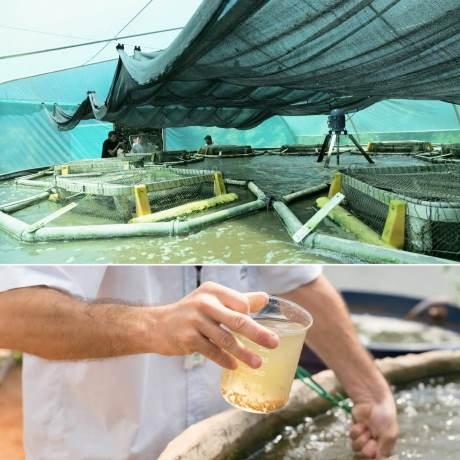 Tanque com sistema de BFT na Itaipu. Fotos: Alexandre Marchetti/Itaipu Binacional.