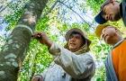 Itaipu vai fazer inventário florestal dos três refúgios biológicos do lado brasileiro